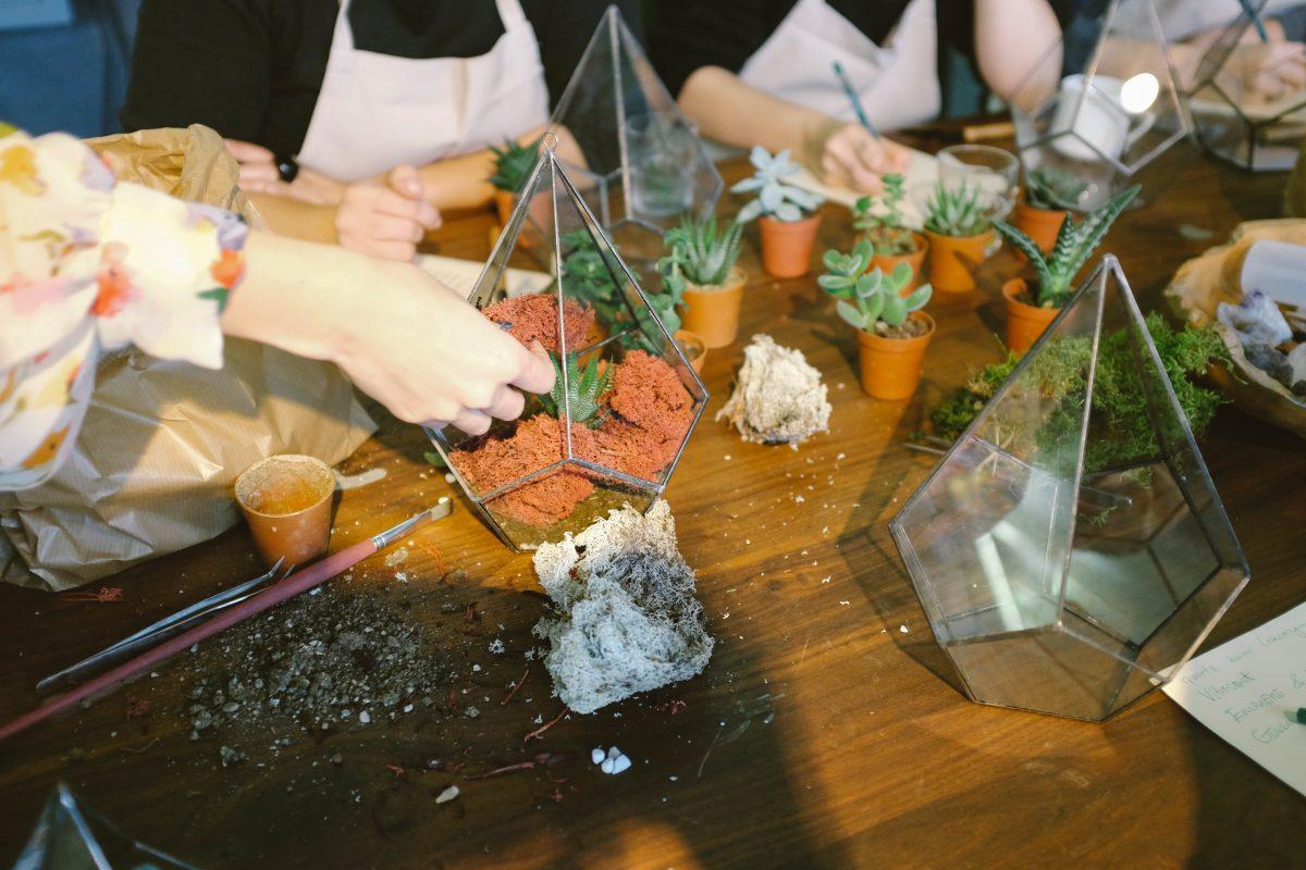 Workshop – Gardening with Terrariums